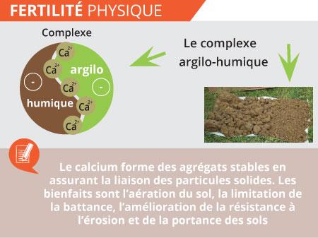 fertilite-physique-ph-chaux-saint-pierre